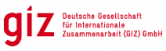 Tender for Procurement of Project Vehicles at the Deutsche Gesellschaft Fur Internationale Zusammenarbeit (GIZ), Nigeria Country Office